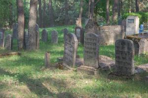 Miesto žydų senosios kapinės, vadinamos Naujosiomis (J. Pašilio g. (įvažiuojant į Zarasus iš Utenos pusės).