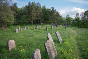 Miesto žydų senosios kapinės (Šaltupės skg., Zaraso ežero pusiasalis).